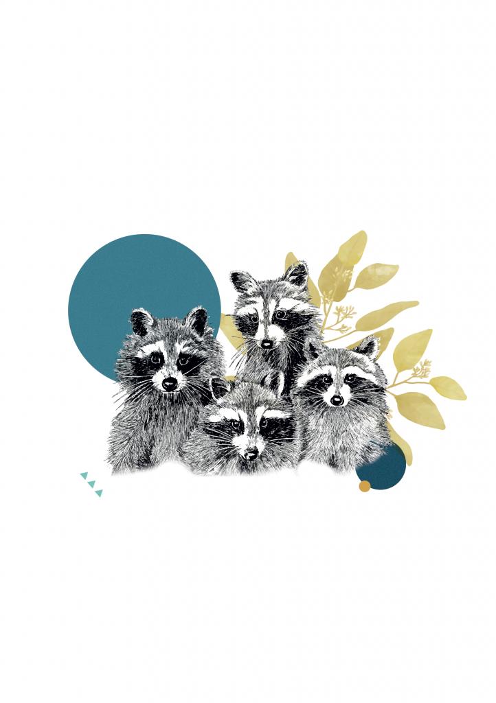 Labo : Carte de voeux - Racoon